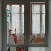 Пластиковая балконная дверь и окно
